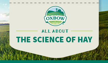 """Oxbow """"Science of Hay"""" Guide"""